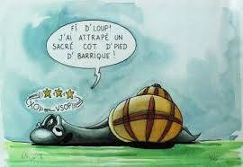 Cagouille saoule
